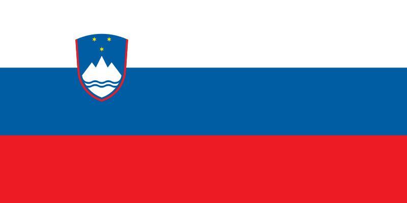 Slowenia Flaga - Kadry narodowe mężczyzn